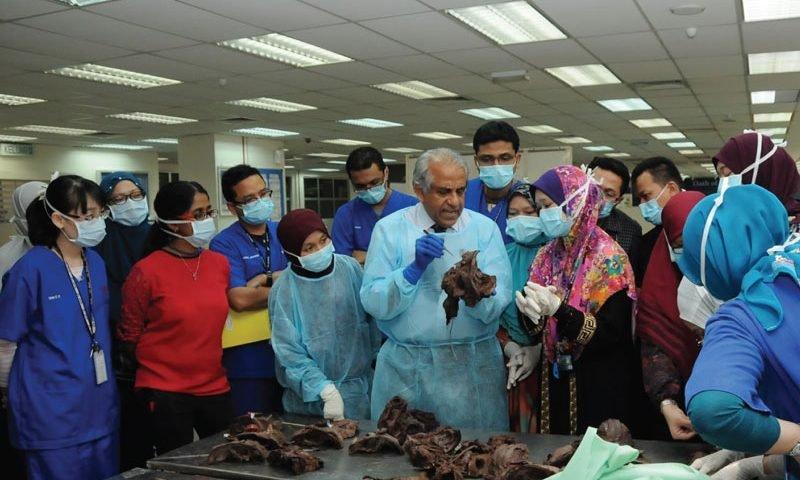 دندانپزشکی در مالزی